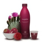 nopalea drinks, nopalea reviews online